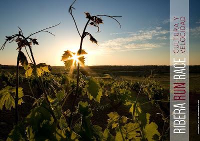 Ribera Run Race: corramos a la sombra de los viñedos